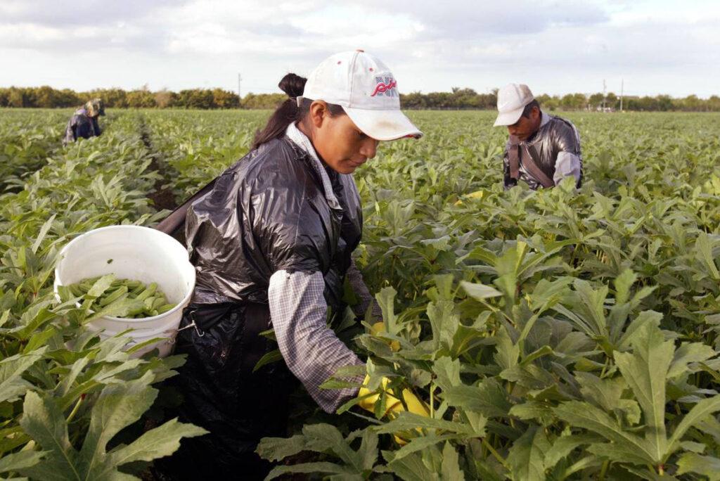 Firma Invitada – Somos trabajadores esenciales y más